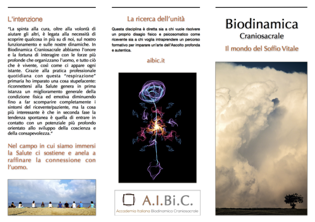 Brochure AIBiC 2017 2:2